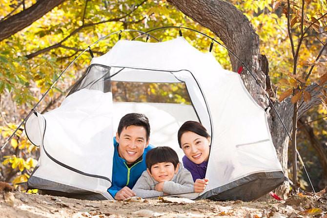 5 Feets 6 Feets Fiberglass Adjustable Tent Rod,Outdoor Use Flexible Glass Fiber Tent Pole for Camping